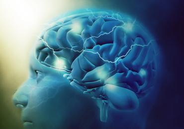 Plasticidade Neural