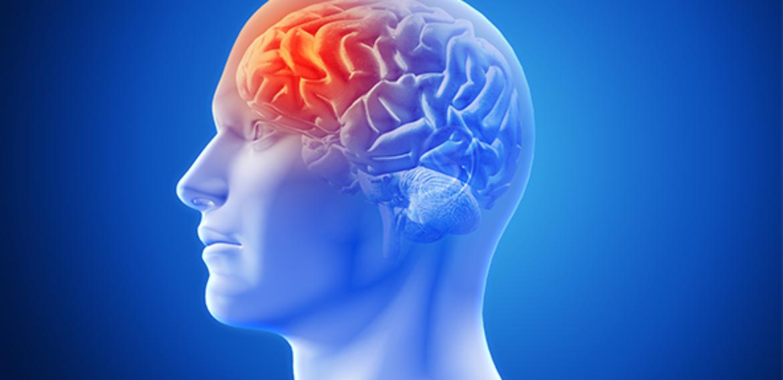 Efeitos da Intervenção Fisioterápica Precoce em Paciente Acometido por Acidente Vascular Encefálico: Estudo de Caso