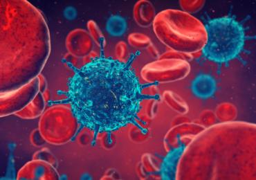 Cura para o HIV pode ter sido encontrada, afirmam cientistas