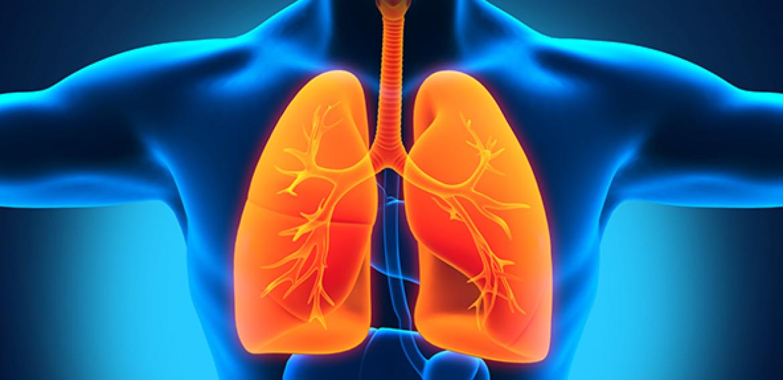 Ventilação Não-Invasiva com pressão positiva em pacientes com Insuficiência Respiratória Aguda: fatores associados à falha ou ao sucesso