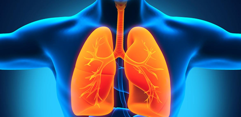 Avaliação da Função Pulmonar Pré e Pós Transplante Renal em um Hospital do Recife: Um Estudo Longitudinal