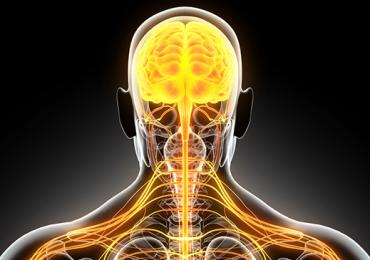 Ligação da Escala Unificada de Classificação da Doença de Parkinson com a Classificação Internacional de Funcionalidade, Incapacidade e Saúde