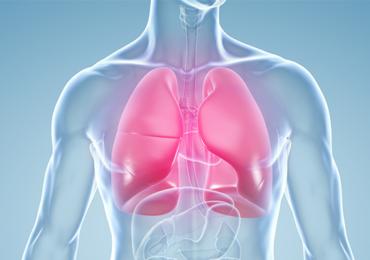 A Importância do Fortalecimento Muscular no Auxílio do Desmame de Pacientes em Ventilação Mecânica Invasiva: Uma Revisão Sistemática