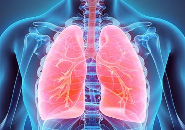 Fisioterapia Respiratória na Disfunção da Bomba Ventilatória no Adulto: Abordagem de Recursos e Técnicas