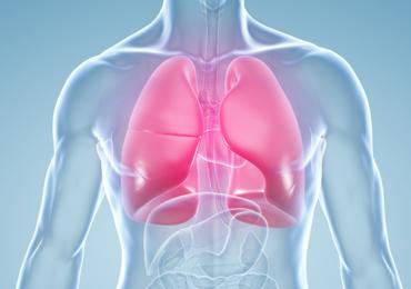 Análise da Força Muscular Respiratória e da Musculatura de Membros Inferiores em Diabéticos em Estratégia de Saúde da Família na Cidade de Caruaru-PE