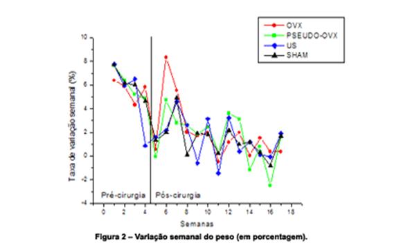 ultra-som-pulsado-baixa-intensidade-2