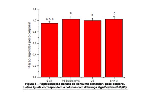 ultra-som-pulsado-baixa-intensidade-3