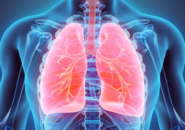 Ventilação Não Invasiva e Esclerose Lateral Amiotrófica (ELA): Revisão da Literatura