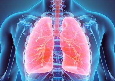 Impacto do Filtro Trocador de Calor Sobre a Pimáx e o Índice de Resistência à Fadiga de Paciente Submetidos ao Teste Respiração Espontânea