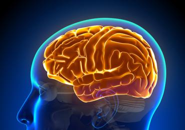 Influência da Facilitação Neuromuscular Proprioceptiva na Funcionalidade dos Indivíduos Pós Acidente Vascular Encefálico: Uma Revisão da Literatura
