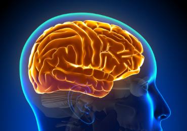 Disfunção cognitiva após a internação em UTI: novas evidências que vão mudar a maneira como pensamos a vida após a UTI