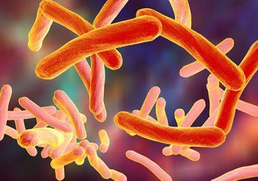 Ministério da Saúde apresenta plano nacional para o fim da tuberculose