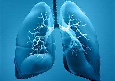 Importância do Treinamento Muscular Respiratório no Desmame da Ventilação Mecânica: Revisão Narrativa