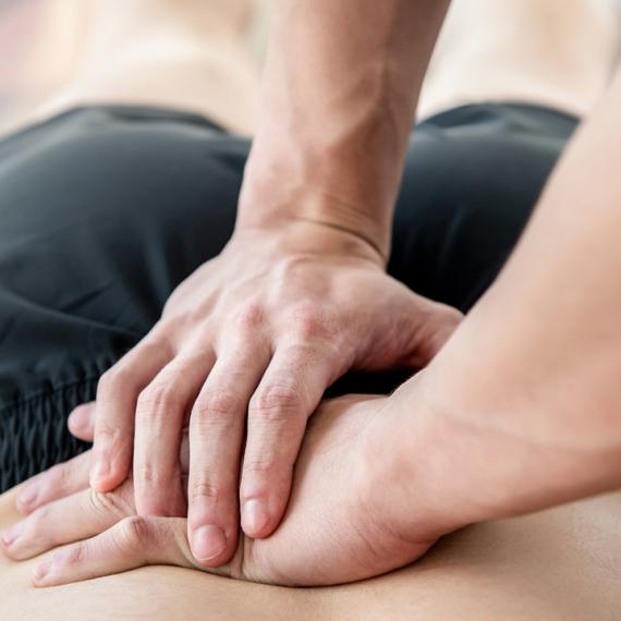 A Eficácia da Terapia Manual no Tratamento da Dor Lombar: Revisão da Literatura