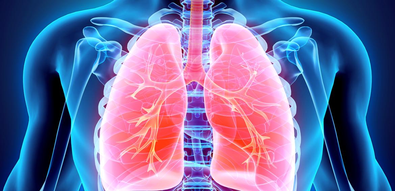 O Efeito da Estimulação Diafragmática Elétrica Transcutânea em Pacientes com Doença Pulmonar Obstrutiva Crônica