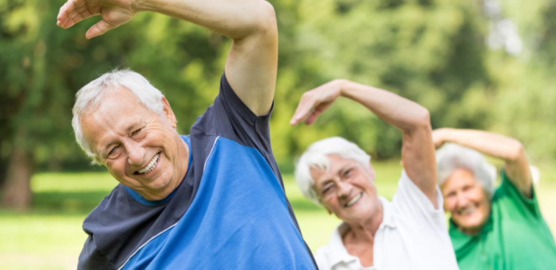 Os Efeitos da Atividade Física Programada e Supervisionada em Idosos com Hipertensão Arterial Sistêmica